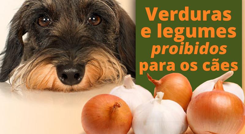 verduras-legumes-proibidos-caes-saude-alimentacao-achepet