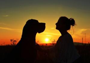 conversar-com-cachorro-3-766x535