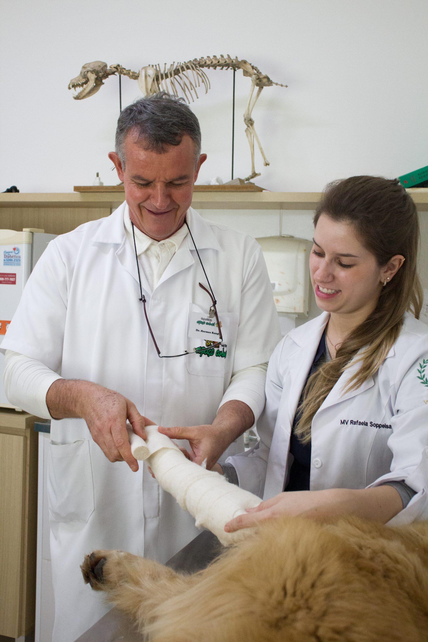 Clínica e Cirurgia